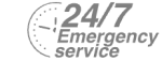 24/7 Emergency Service Pest Control in Hounslow, Lampton, TW3. Call Now! 020 8166 9746